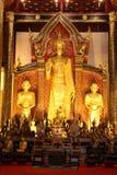 Tempel i Chiang Mai thailand Royaltyfri Fotografi