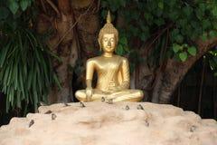 Tempel i Chiang Mai thailand Royaltyfria Bilder