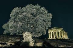 Tempel i den Agrigento natten i Sicilien - Italien Arkivbild