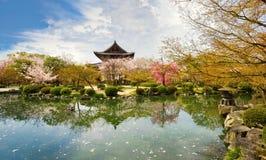 Tempel i Kyoto i våren, Japan Arkivbild