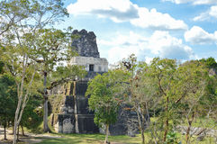 Tempel II av den arkeologiska platsen för Maya av Tikal Royaltyfri Foto