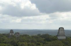 Tempel III tikal Stockfoto
