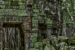 Tempel im kambodschanischen Dschungel lizenzfreies stockfoto