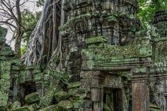 Tempel im kambodschanischen Dschungel lizenzfreie stockfotos