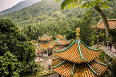 Tempel im Wald stockfotos