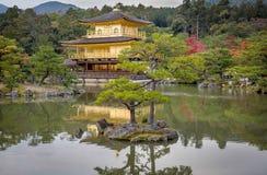 Tempel Kinkakuji (guld- pavillon) Fotografering för Bildbyråer