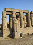 Tempel in Luxor Stock Fotografie