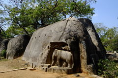 Tempel Mahabalipuram stock afbeeldingen