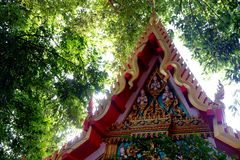Tempel med naturen royaltyfri fotografi
