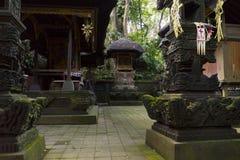 Tempel på apan Forest Sanctuary i Ubud Royaltyfri Foto