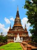 Tempel på Ayutthaya, Thailand Royaltyfri Foto