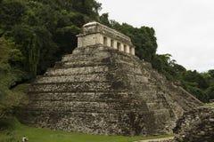 Tempel på Palenque Arkivbilder