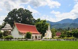 Tempel på risfält Royaltyfria Bilder