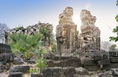 Tempel ruiniert Th XII Jahrhundert, Siem Reap, Kambodscha stockfotografie