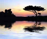 Tempel am Sonnenuntergang Stockbild