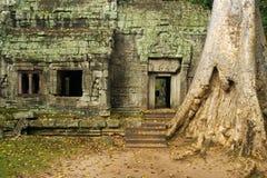 Tempel Ta-Prohm Lizenzfreie Stockfotos