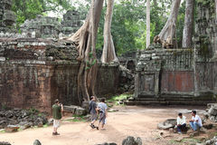 Tempel Ta Prohm in Angkor Wat Stockfotos