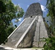 tempel tikal v Arkivfoto