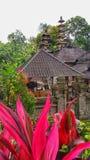 Tempel Ubud, Bali Royaltyfria Bilder