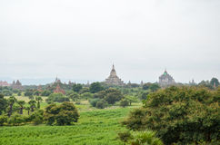Tempel und Pagoden in den Bagan-Ebenen, Myanmar Lizenzfreie Stockfotografie