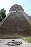 Tempel V på Tikal, Guatemala, Central America Royaltyfri Fotografi