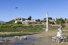 Tempel van artemis Selcuk Turkije Royalty-vrije Stock Foto's