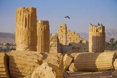 Tempel van Bels - Palmyra Stock Afbeeldingen
