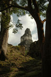 Tempel van de Jaguar Royalty-vrije Stock Fotografie