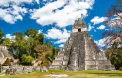 Tempel van Groot Jaguar in Tikal in Guatemala stock afbeeldingen