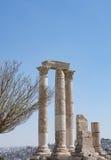 Tempel van Hercules met Boom royalty-vrije stock afbeeldingen