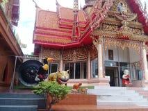 Tempel 8 van het tijgerhol Royalty-vrije Stock Foto