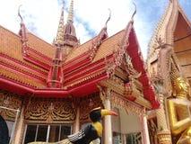 Tempel 10 van het tijgerhol Stock Fotografie