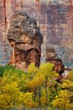 Tempel van Sinawava, Zion Stock Foto