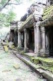 Tempel van Ta -Ta-prom Kambodja De tempel ter ere van Angelina Jolie wordt genoemd die Stock Afbeelding