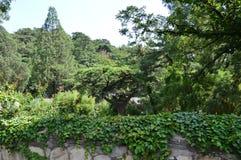 Tempel von Aestheic-Garten Stockfotografie