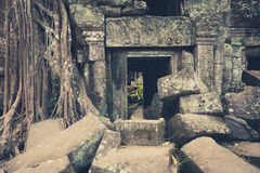 Tempel von Angkor Wat, Kambodscha Lizenzfreie Stockbilder
