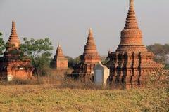 Tempel von Bagan bei Sonnenuntergang 3 Stockbild