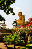 Tempel von Buddha auf Sri Lanka (Ceylon) Lizenzfreie Stockfotografie