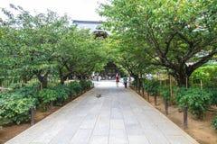 Tempel von Kamakura Lizenzfreies Stockfoto