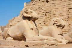 Tempel von Karnak Lizenzfreies Stockfoto