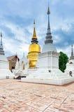 Tempel Wat Suan Dok in Chiang Mai; Thailand lizenzfreies stockbild
