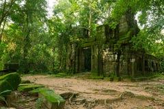 Tempel in wildernis - de tempel van Ta Prohm Stock Foto's