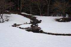 Tempelgarten im Winter in Japan Stockfoto
