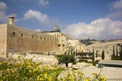 Tempelmontering, Jerusalem, Israel Royaltyfri Fotografi