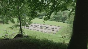 Tempelruïnes in het bos stock videobeelden