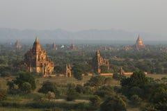 Tempels van Bagan Stock Fotografie