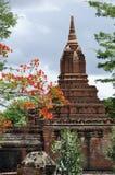 Tempels van Bagan Myanmar Stock Foto's
