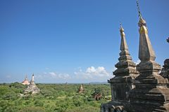 Tempelspitsen in Bagan stock foto's