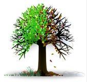 Tempera a árvore ilustração stock