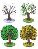 Tempera a árvore Imagem de Stock